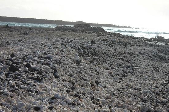Hoapili Trail: beautiful coral beach