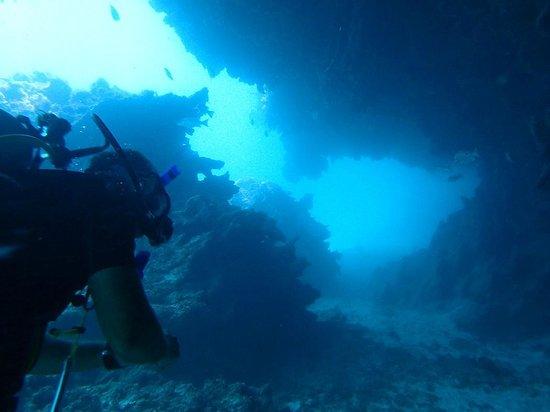 Dive Little Corn - Day Dives: Dive Little Corn