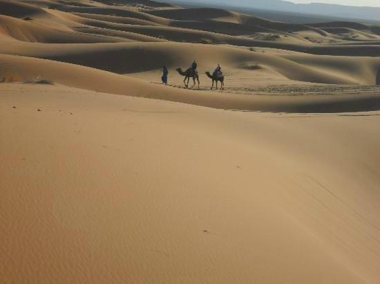 Auberge Berberes: excursion dromadairre