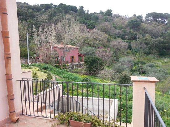 Le Ginestre B&B : Vista dal terrazzo
