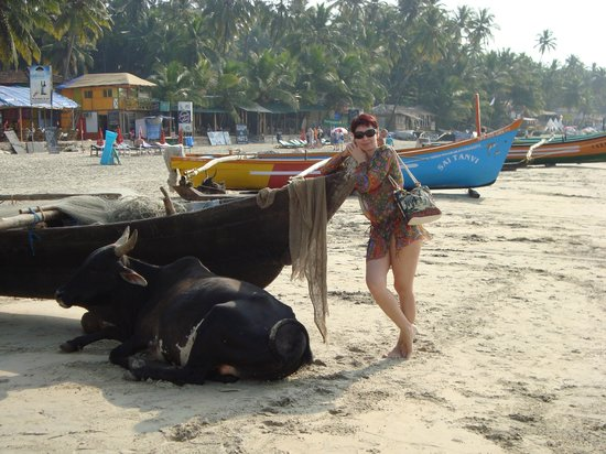 Canacona, India: лучший пляж гоа!
