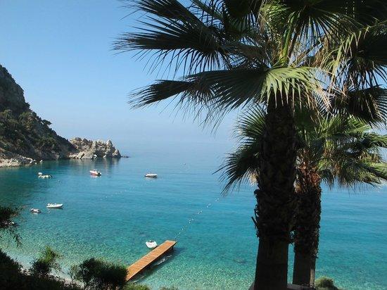 Liberty Hotels Lykia: пальмы