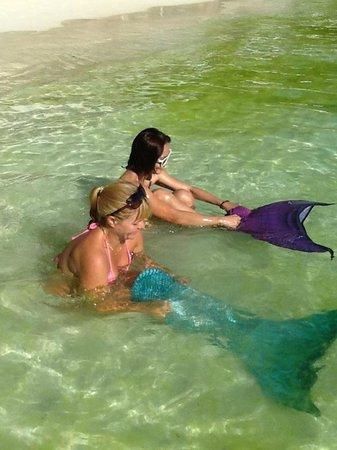 Dave's Straw Hat Inn: Mermaid lessons in the algae (station 1)
