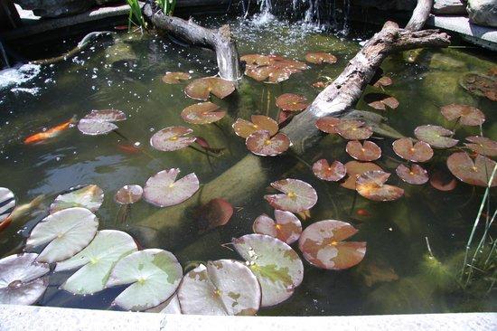 Millcroft Inn Restaurant: Pond in Spa area