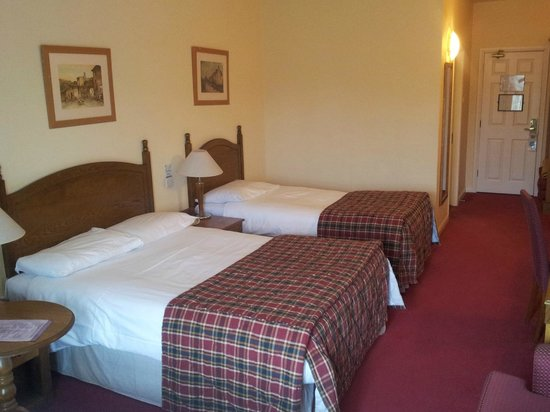 Shannon Springs Hotel : Ex-Large Family Room - Shannon Court Hotel