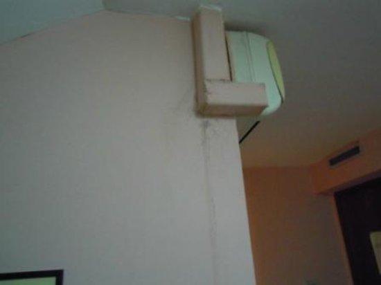 New Baby Hotel: muro camera