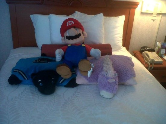 Best Western Plus Virginia Beach: Housekeeping making the kids' toys comfy