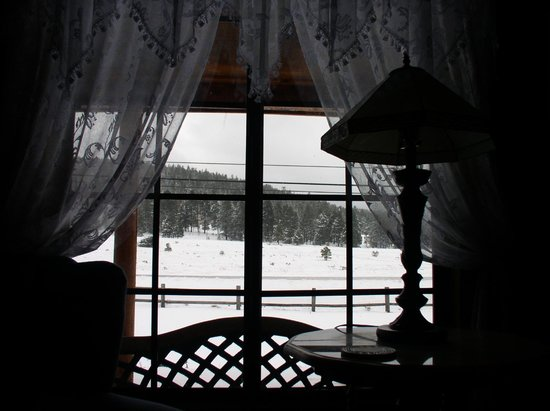 Grand Living Bed & Breakfast: View from window.