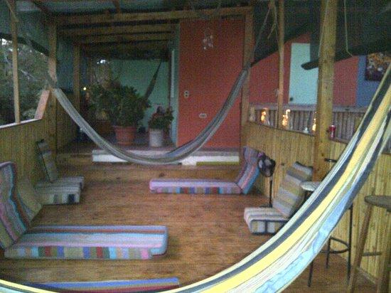 Zuzu's Hangout Guest House: terraza