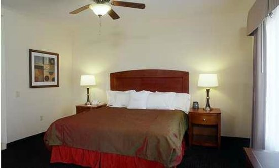 Homewood Suites by Hilton Houston West-Energy Corridor: Suite with King Bed