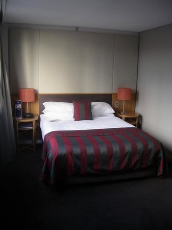 North Sydney Harbourview Hotel: The room