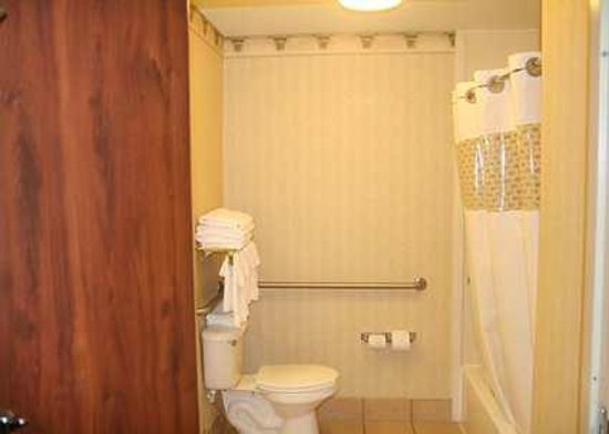 Hampton Inn Houston/Humble-Airport Area: Hotel Room with Accessible Bathroom