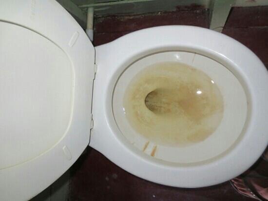 Ignacio's Cabins: toilettes à notre arrivee