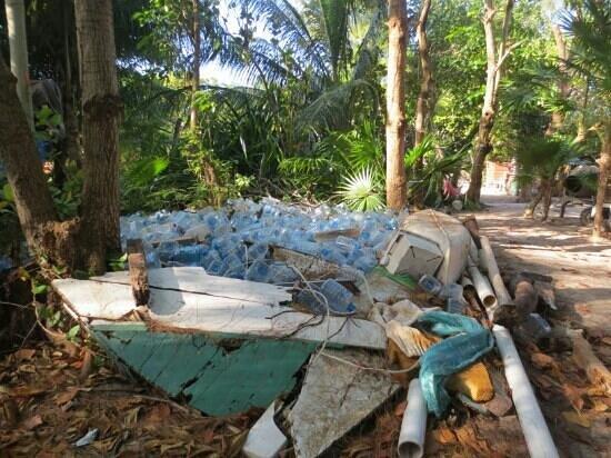 Ignacio's Cabins: le jardin juste derrière les cabines...