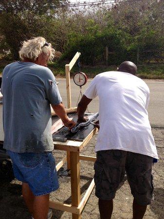 Ziggy's Island Market: Tony and Bill filleting some fresh fish