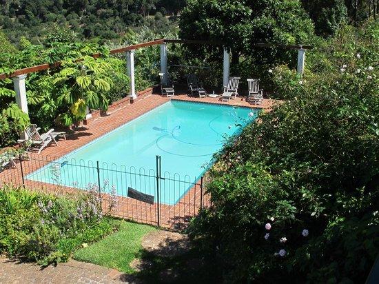 Klein Bosheuwel Guest House: Hinterer Pool