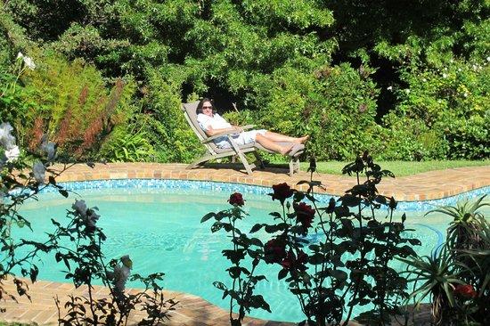 Klein Bosheuwel Guest House: Vorderer Pool