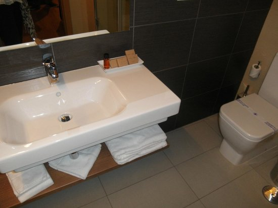 Hotel Meson de Erosa : Baño