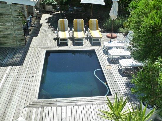 Sea Breeze: Pool Area