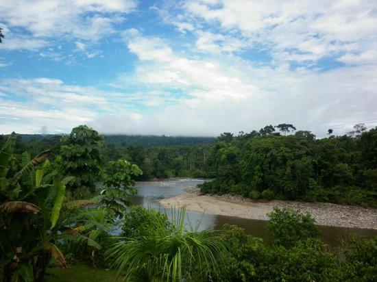 Banana Lodge: Вид на реку