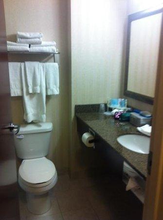 Holiday Inn Express Hotel & Suites Whitecourt: bathroom (king room)