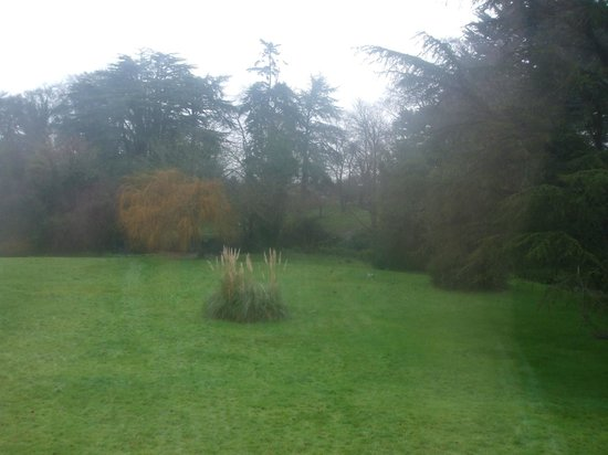 Boyne Valley Hotel & Country Club: View of the garden from bedroom window