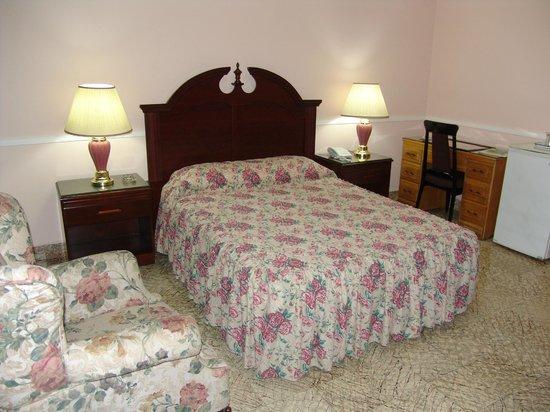 Mariscal Hotel & Suites: Habitación Standart