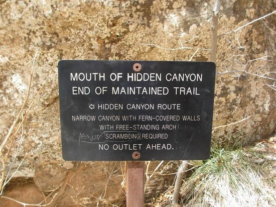Hidden Canyon : This is where you start scrambling over obstacles