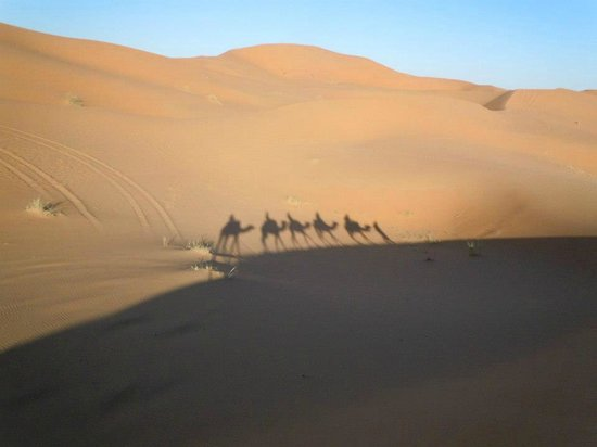 Auberge Camping Sahara: Camel ride to the bivouac