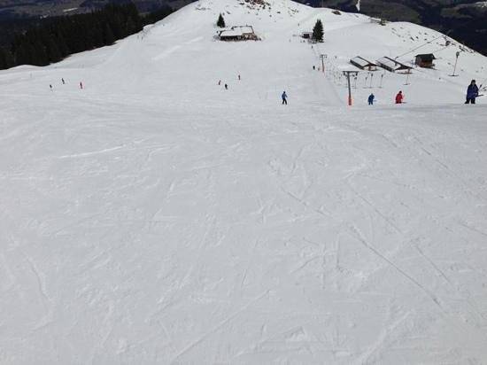 Hotel Hannes: top of the blue run