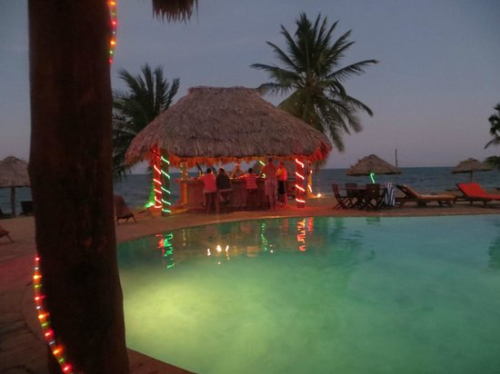 Belizean Dreams : The very small bar by the pool