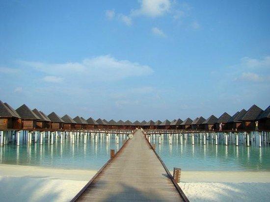 Olhuveli Beach & Spa Maldives: Water Villas