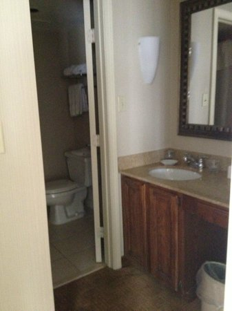 Homewood Suites by Hilton Hartford/Windsor Locks : Bathroom