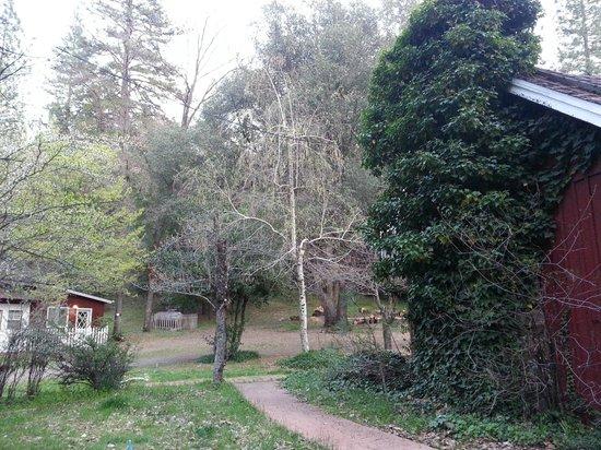 Sierrascape: Outside