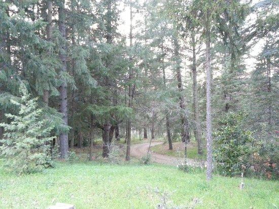 Sierrascape: Lots of land