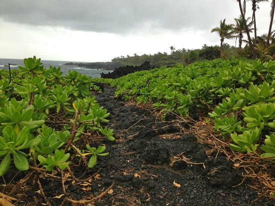 Wai'anapanapa State Park: Hike to blow holes