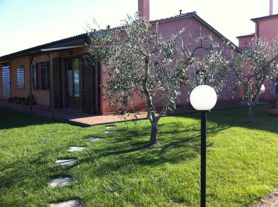 Podere Casalpiano: Giardino