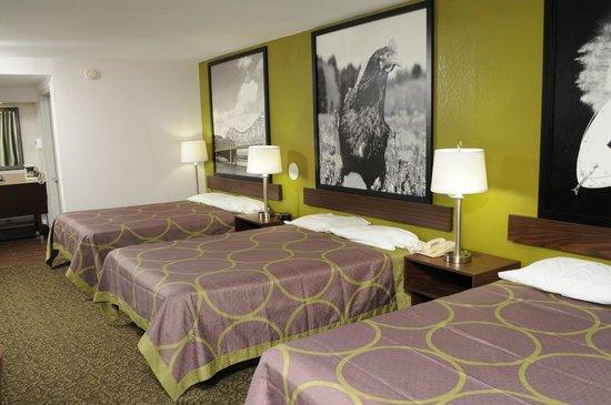Super 8 Gainesville: Triple double beds