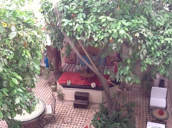 Riad Aguerzame: garden