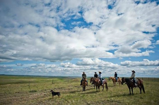 Willow Lane Ranch : It's called Big Sky Country for a reason.