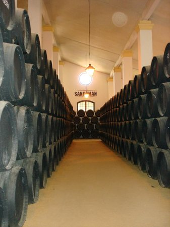 The House of Sandeman Jerez: The Bodega