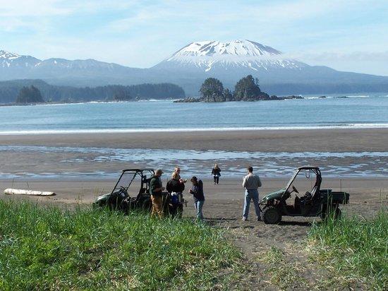 Sitka Tours Tripadvisor