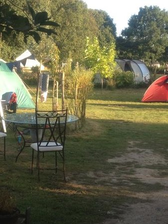 Welsummer Camping: The small meadow at Welsummer
