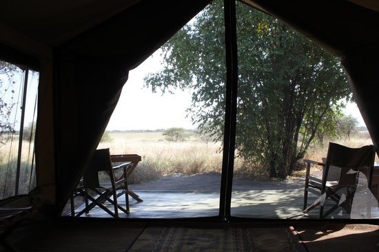 Manyara Ranch Conservancy: The view from our tent.
