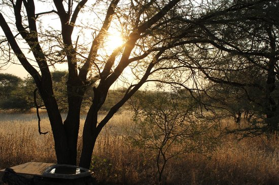 Manyara Ranch Conservancy : Sunset by the fire.