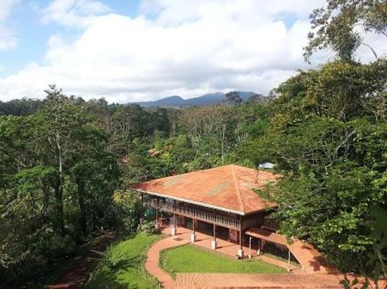 Finca Luna Nueva Lodge: View from observation tower