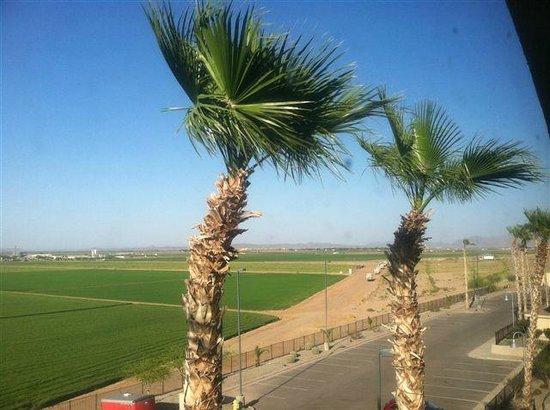 Candlewood Suites Yuma: View NE from room - top floor (4th)