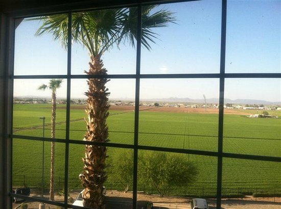 Candlewood Suites Yuma : View