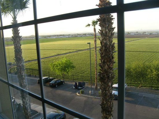 Candlewood Suites Yuma: View of back parking lot