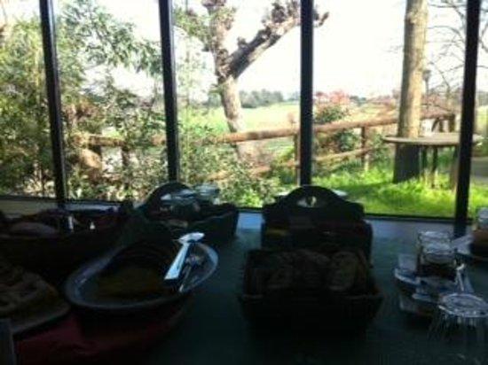Alloggio al San Girolamo: veduta durante la colazione
